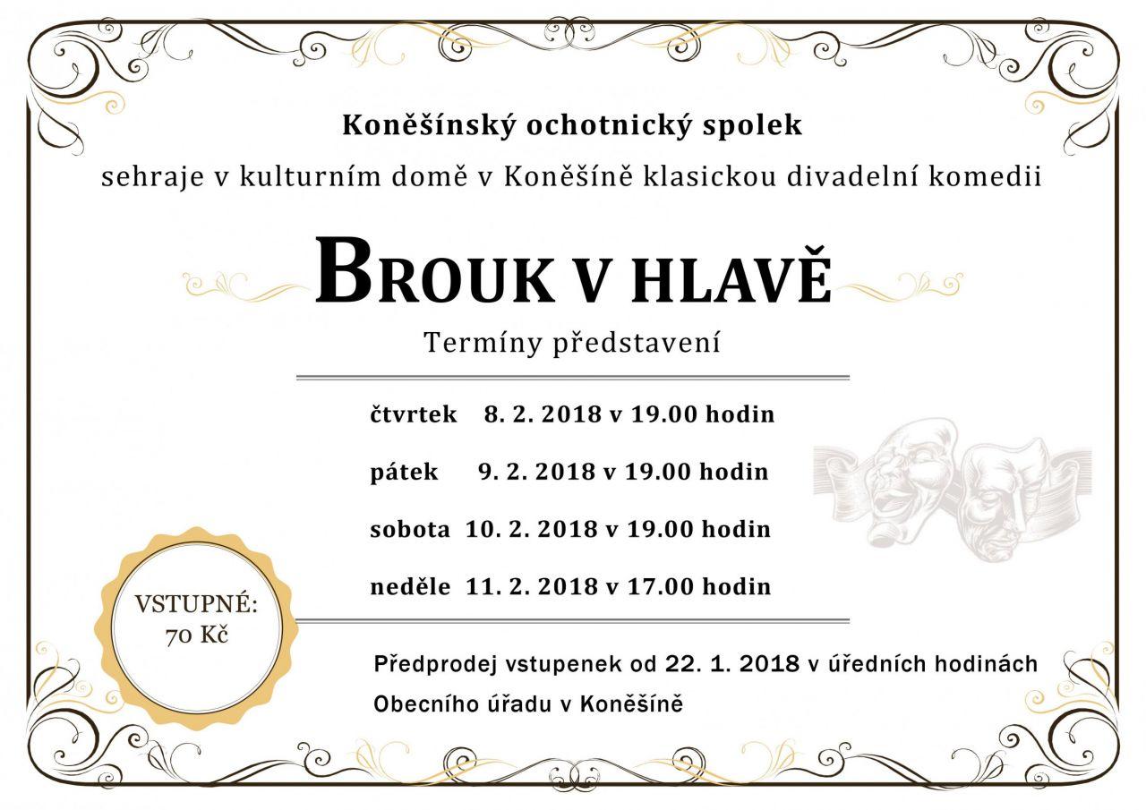 """Divadelní představení """"Brouk v hlavě"""" v Koněšíně 1"""